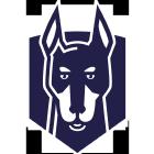 Snyk logo preview