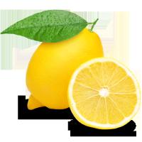 lemonboston