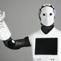 @pal-robotics