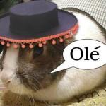 @oblique63