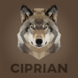 @CiRIP