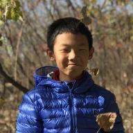 @wyingquan