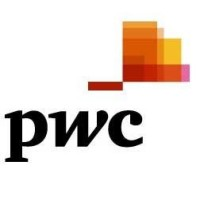 PwC BGT Digital experience solutions