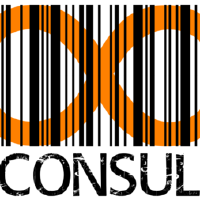 @chaos-consulting