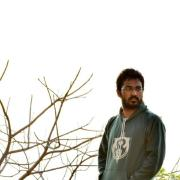 @dineshadepu