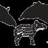 @tapirconservation