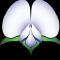 @UofS-Pulse-Binfo