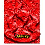 @JamesSky