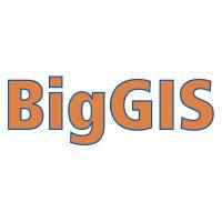 @biggis-project