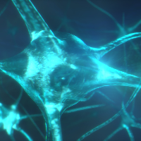 VRL-Neurolucida-Project