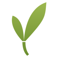 @New-Bamboo