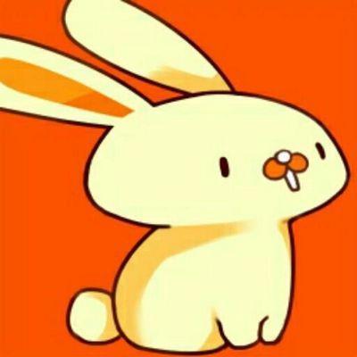 いらいざ's icon