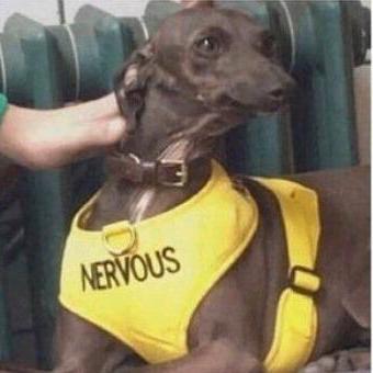 Suzanne Becker