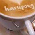 @harupong