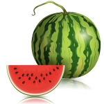 @watermelon-brother
