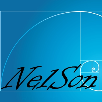 Nelson-numerical-software