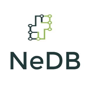 GitHub - nedbhq/nedb-camo: A class-based ES6 ODM for Mongo