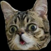 @ramsanath