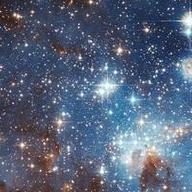 @shimonxin