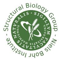 @Niels-Bohr-Institute-XNS-StructBiophys
