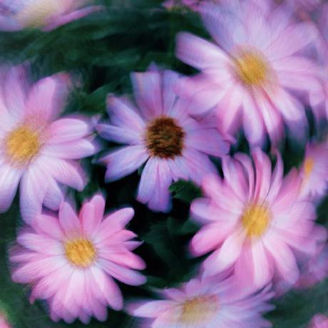 Zeke Medley's avatar