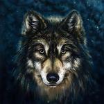 @geekwolf