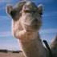 @camellzone