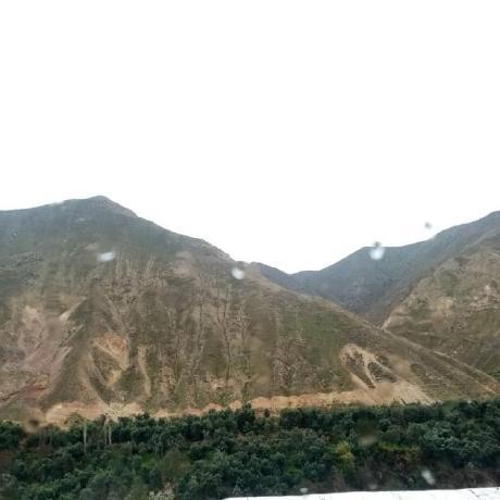 Ali Nehrani