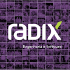 @Radix-Engineering-and-Software