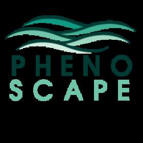 Phonoscape