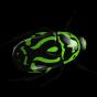 @beetlenaut