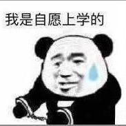 StefanWangsjtu ( WangJian )
