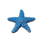 @rhaley-starfish