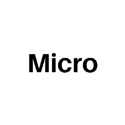 micro/examples