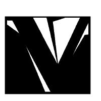 @vtil-project