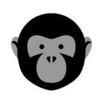 @Bonobolabs