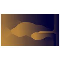 Exorun logo
