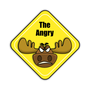a-musing-moose, Symfony developer