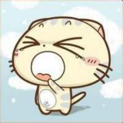 @shwenzhang