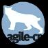 @agile-cr